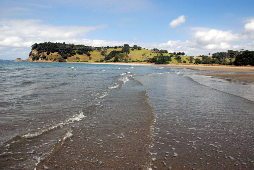 Beach and headland at Mahurangi Regional Park.