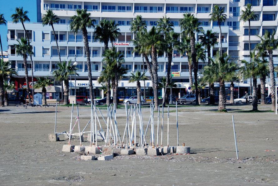 Finikoudes beach and the Washingtonia palms , Larnaca