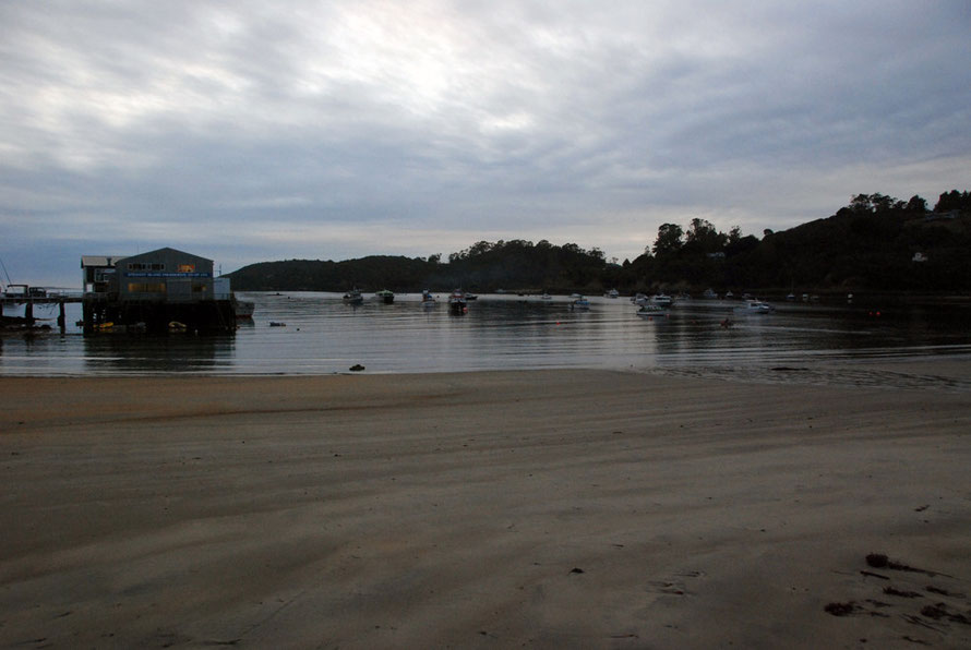 Half Moon Bay in the early morning of a late summer day on Stewart Island (ferry terminal on left).