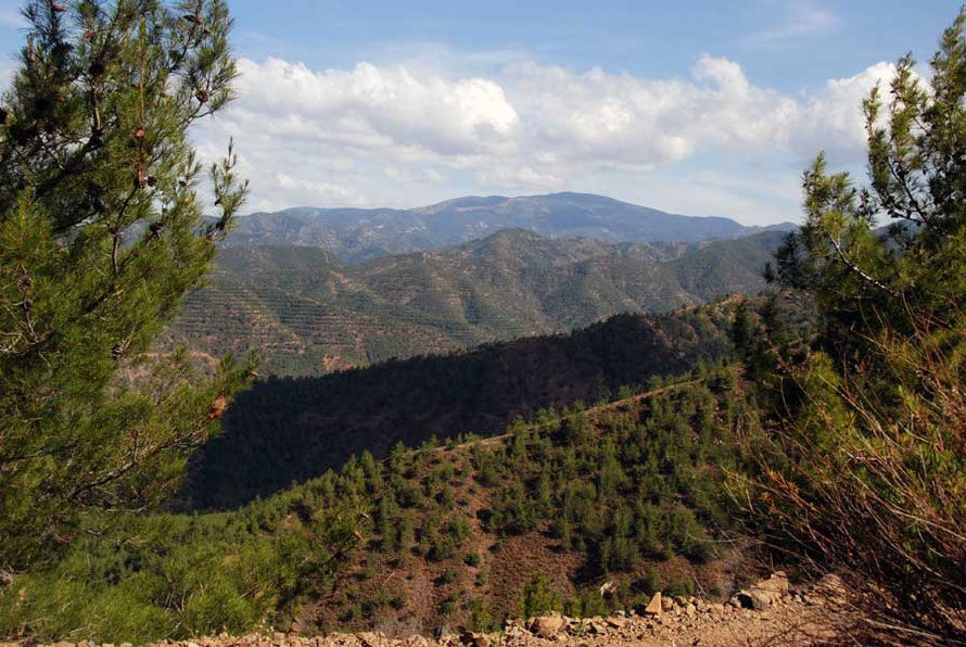 Looking south east back up to the High Troodos from the ridge above the Xeros valley, Marathasa
