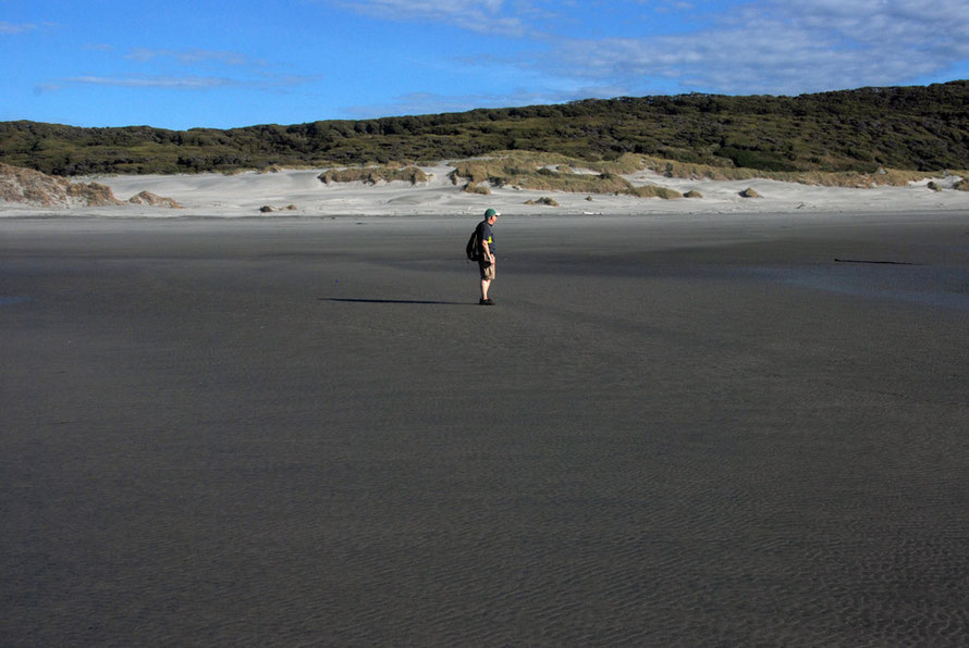 John waits on the dark sands of the intertidal zone at Wharariki Beach.