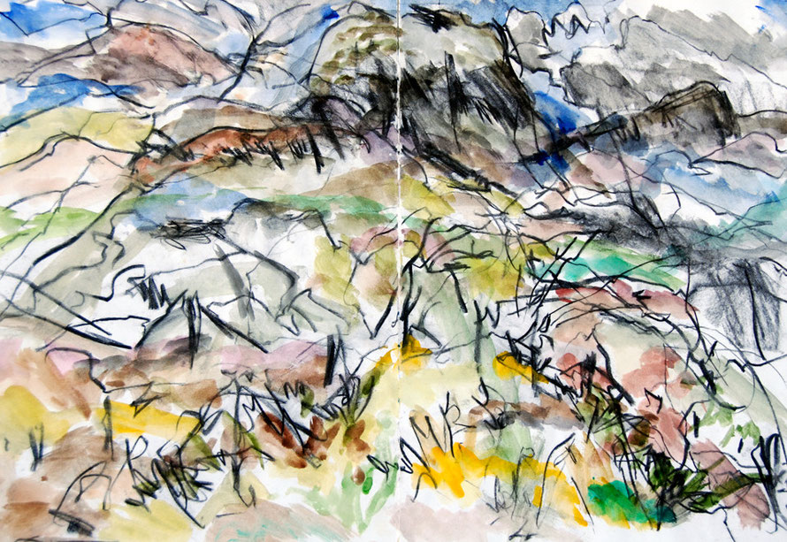 Looking to the Rhinog range from Dinas in Cwm Bychan, North Wales 1992 (Charcoal and Watercolour) FErgus Murray