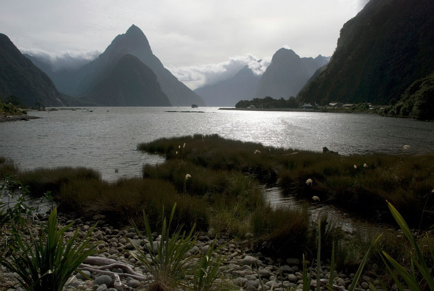 The Milford Sound tourist drawcard visited by 470,000 people in the 2004/5 season.