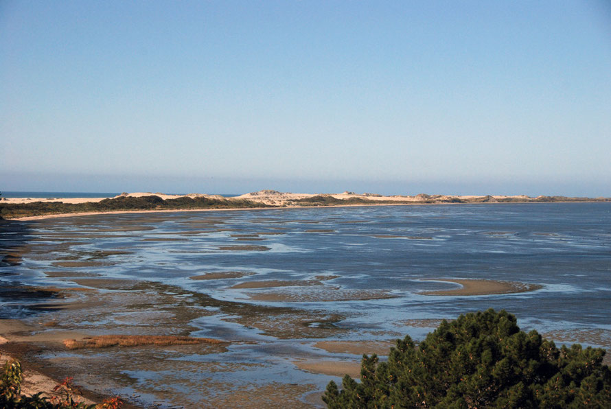 The protected mudflats behind Farewell Spit in Golden Bay