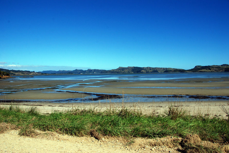 The tide out at Whanganui looking across to the north arm of the inlet studded with limestone bluffs and outcrops
