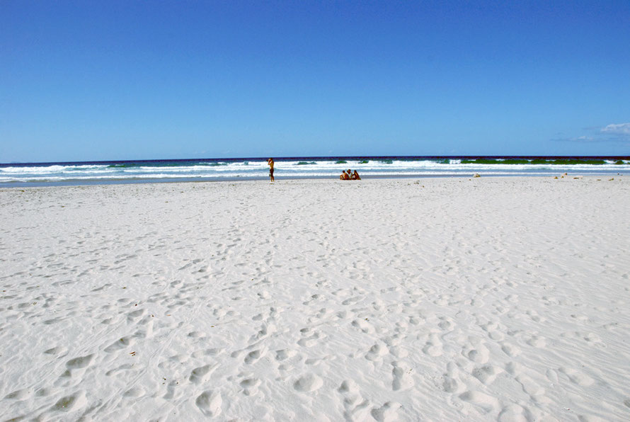 The beautiful white sands of Pakiri beach at the south end of its 10km length.