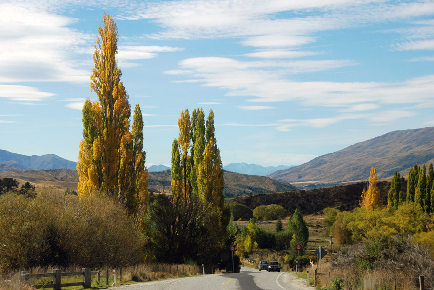 The Cardrona Valley and river heading north to join the Hawea and then the Clutha/Mata-Au