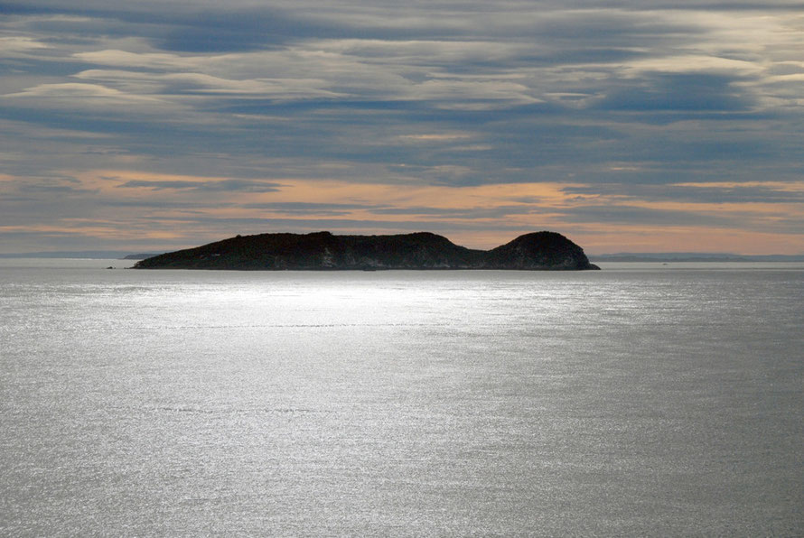 Te Marama Island in the Foveaux Strait - seen from Ackers Point on Stewart Island  in late summer morning light when high pressure prevailed.