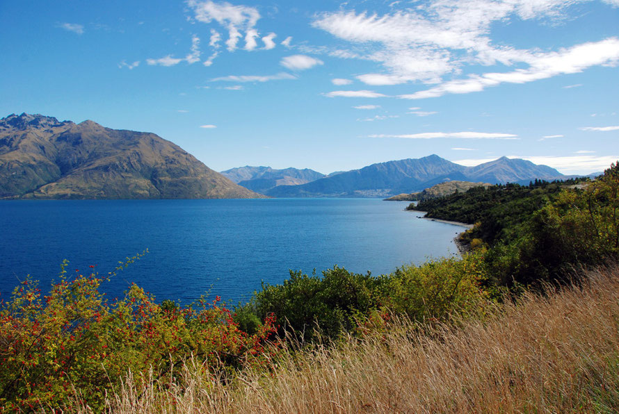 Looking north up the eastern leg of Lake Wakitipu towards Queenstown and Vanguard Peak (1768m). The Wakitipu catchment flows into the Clutha/Mata-Au via the Kawarau River