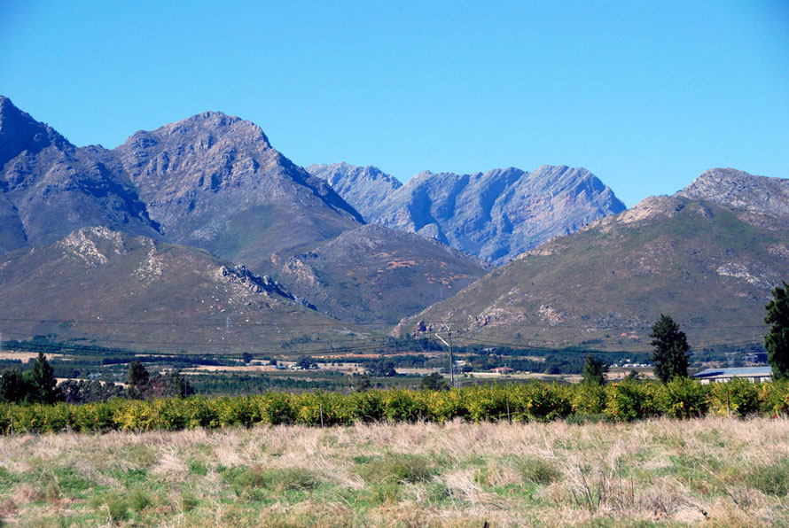 The Breede River valley above Worcester looking north to the Matroosberg Mountains