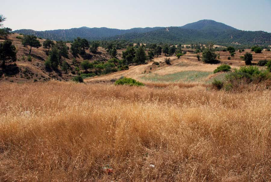 Pocket-sized fields and the northern Troodos between Koutrafas and Skouriotissa