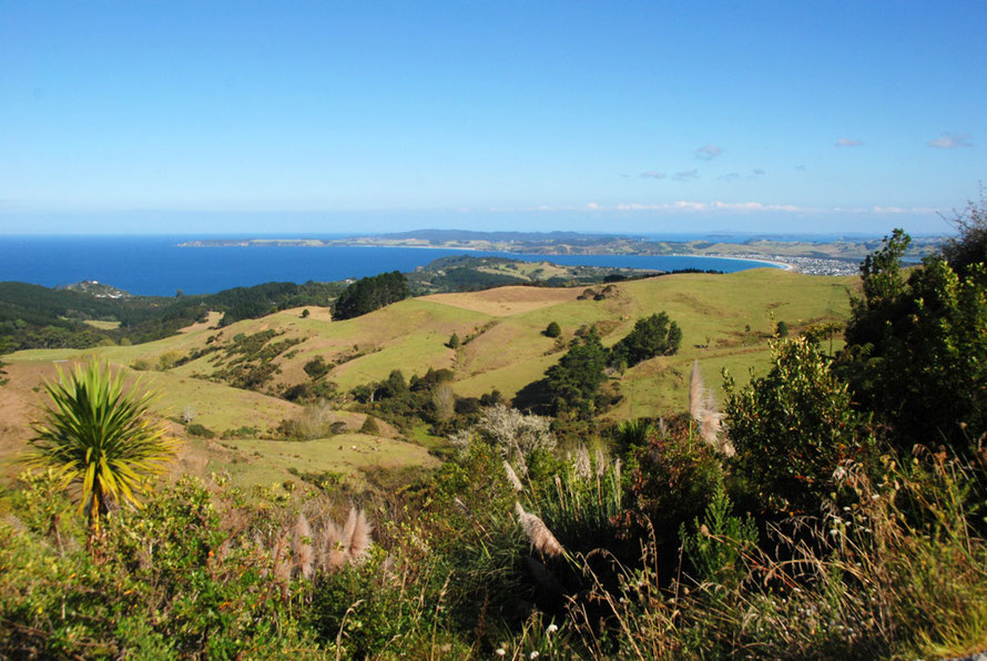 Looking south from Cape Rodney over Omaha Bay to Takatu Point with Tiritiri Matangi Island in the far distance.
