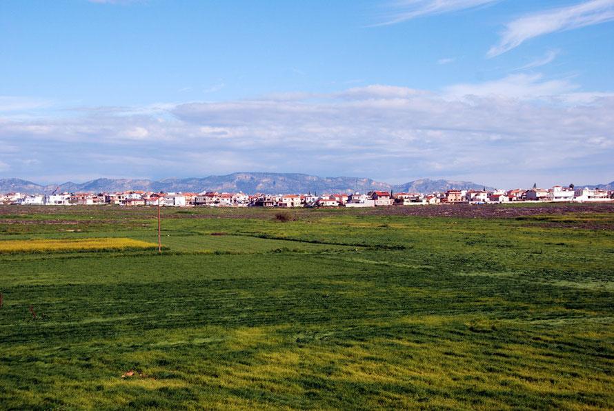 New housing to the west of Nicosia at Mammari.