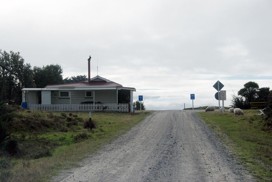 Homestead with a white pciket fence on the approach to Gillespie's Beach. The blue signs are not for a railway crossing but prohibit camping and campervans.
