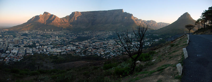 Panorama of City Bowl and from left Devil's Peak, Table Mountain, Twelve Apostles, Lion's Head and in foreground burnt tree and bank still smoking from recent  fynbos fire