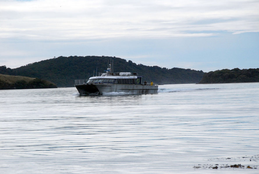 Big ferry comming into Ulva after we had left thankfu