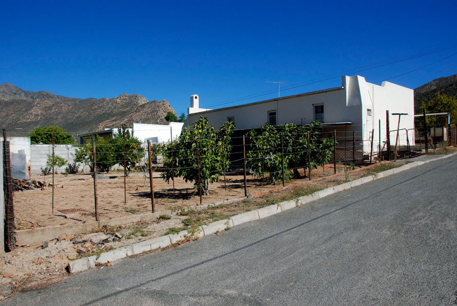 Low-tech security in laid-back West Montagu