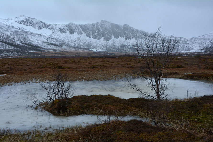 Senja Island on a foul day in April on the flat marshy thawing wasteland before the steep climb up and over to Gryllfjord.