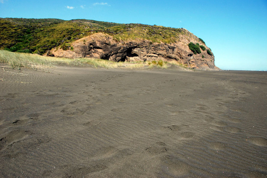 Black sands and brute headland at Karakere Beach.