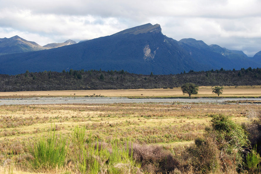 The Milford Road beyond Te Anau Downs looking across the Eglinton River and the Turret Peaks (1317m). The cuesta, or sloping mesa of the moutain is typical of the Westward-dipping Sandfly Formation.