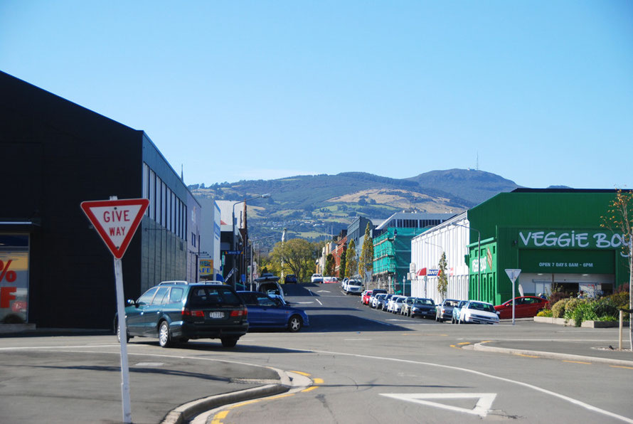 Commercial Dunedin with Mt Cargill (676m) in the background