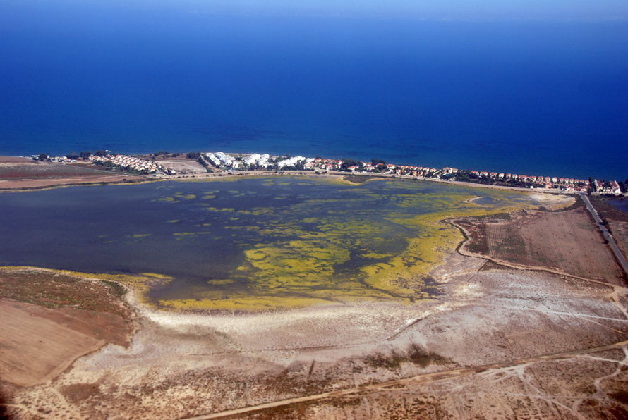 Mosquito problems at Larnaca Salt Lakes looking towards Cape Kiti