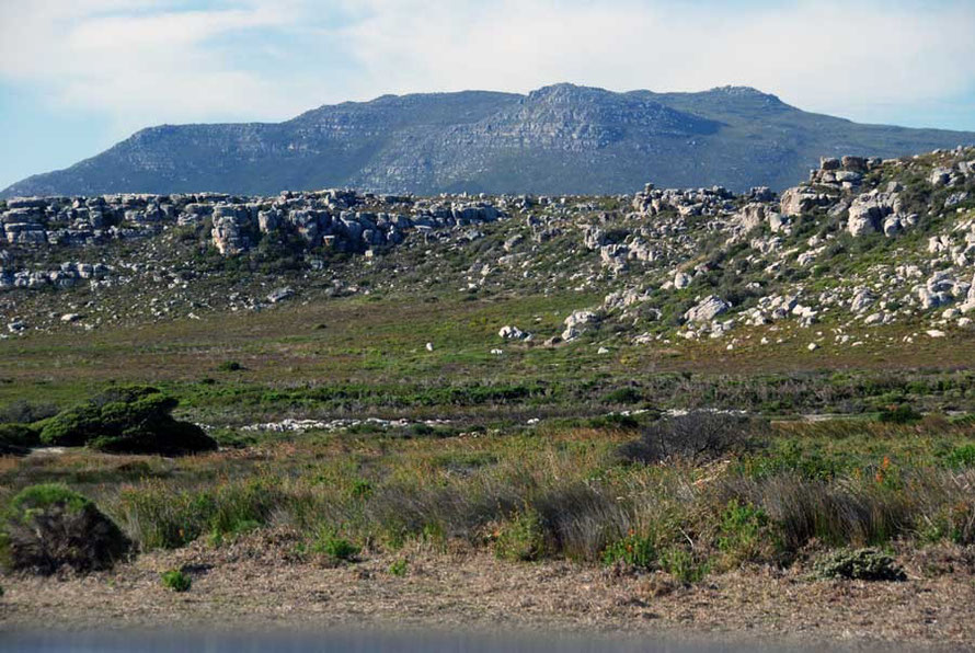 A beautiful landscape devoid of people: from the Olifantbos Bay Road, Table Mountain National Park