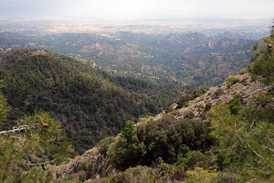 Cyrpus has many endemic species threatened by the pace of development and habitat loss. View from the eastern Troodos towards Nicosia from below Mount Kionia
