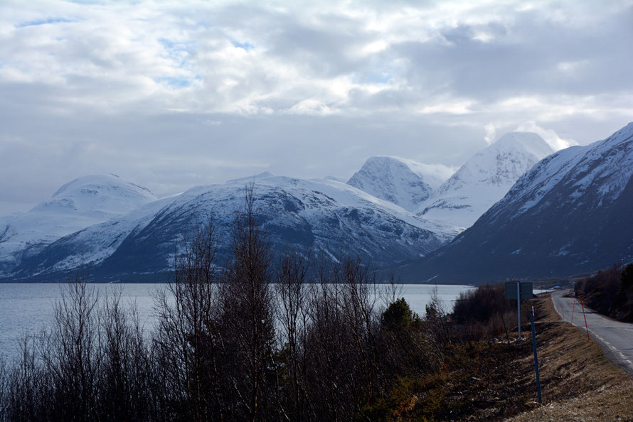 The harsh climate and terrain of the Lyngen Line. View from west side of Storfjorden and the Lyngen Alps with Kvieta at 1751m. Glacier fields and the Steindalsbreen glacier increase the hzardous conditions in these mountains. Photo in late April 2015.