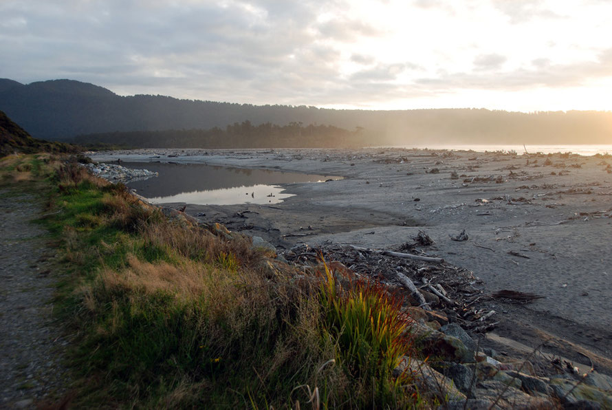 Bruce Bay between Haast and Fox Glacier