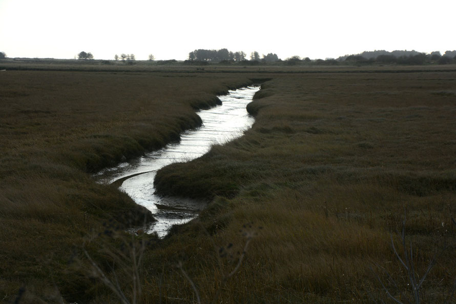 A drainage ditch on the salt flats at Pegwell Bay, the sun now veiled behind high cloud.