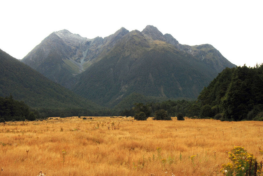 The Eglinton River valley on the Milford Road with Melita Peak (1,680m).