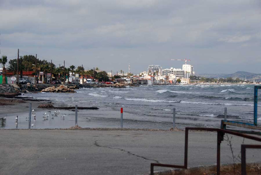 Sea front at Larnaca with washed up Sea Grass on foreshore, February 2011
