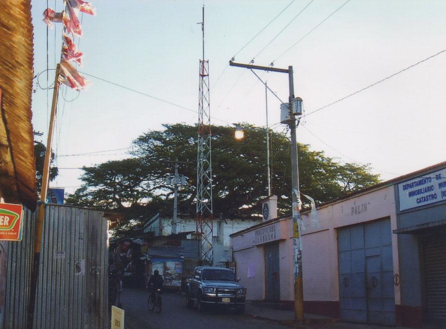 De magistrale ceiba in Guatemala - op 21 december 2003 vanuit het westen gezien door mij Thea-Warrior.