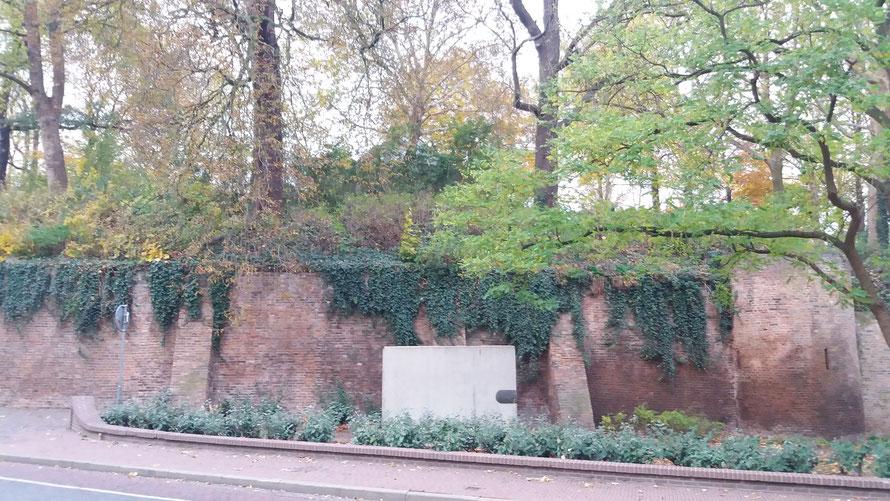Nijmegen Voerweg - Billennium-monument Raf Verjans - Energielijn Sinte-Ontcommer/ Charlotte
