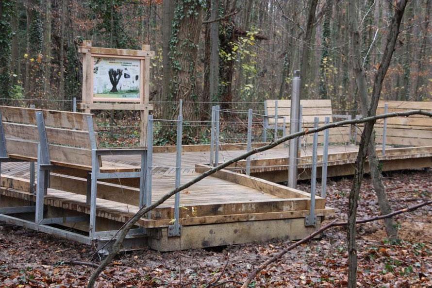 Am Ende des 34 Meter langen Weges befinden sich eine Infotafel und Bänke, auf enen man in Ruhe die Natur beochten kann. Auch ein wird noch Fernrohr installiert.