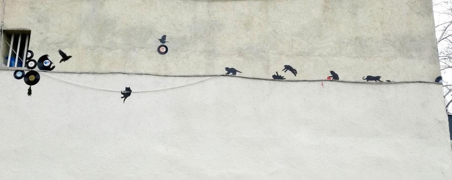 Photo : Pierre Gremilly (Cliquez pour mieux voir, il y a même une souris, cherchez bien...)