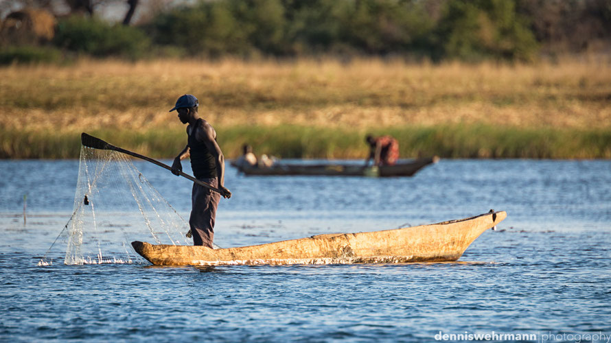 fisherman on the sambesi - the border between namibia and sambia - in the caprivi strip. the fisher is using the typical wooden makoro canoe and can cross the border without any control. d610, 900mm, f6.3, 1/500 sec., iso 200