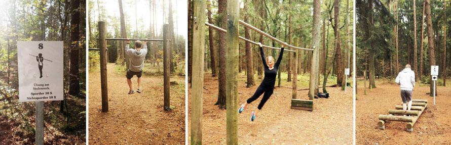 Alltagsabenteurer Alltagsabenteuer Trimmdich-Pfad Trimm-dich-Pfad Wald Hürdenlauf Parcours Balancieren Trimm dich Klimmzüge