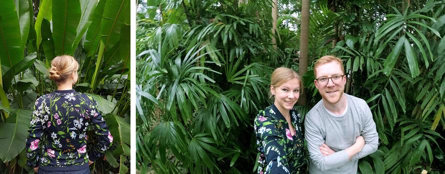 Freizeittipp Hamburg Tropengewächshaus Planten un Blomen Schaugewächshaus Freizeit Auszeit Urwald Alltagsabenteuer Alltagsabenteurer