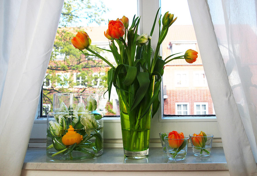 Urban Jungle Bloggers Plants Pflanzen U-Boot Tee-Ei Tulpen Alltagsabenteurer Alltagsabenteuer Fensterbank Vase