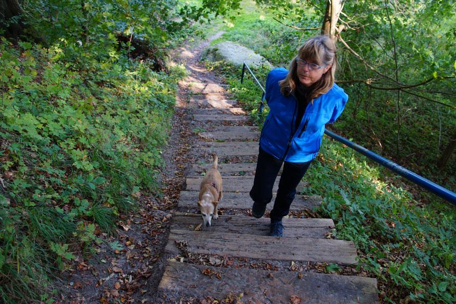 Die abenteuerliche Treppe runter zu den Katamaranliegeplätzen