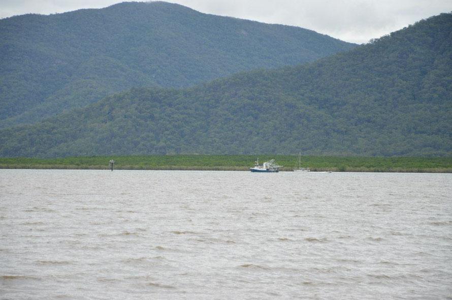 Für meine Sea Patrol Freunde: da fährt bestimmt gerade ein illegaler Trowler aus dem Hafen von Cairns aus