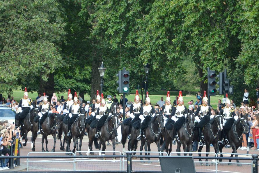 Die Horseguard auf Ihrem Weg zur eigenen Wachablösung vom Hyde-Park her kommend.