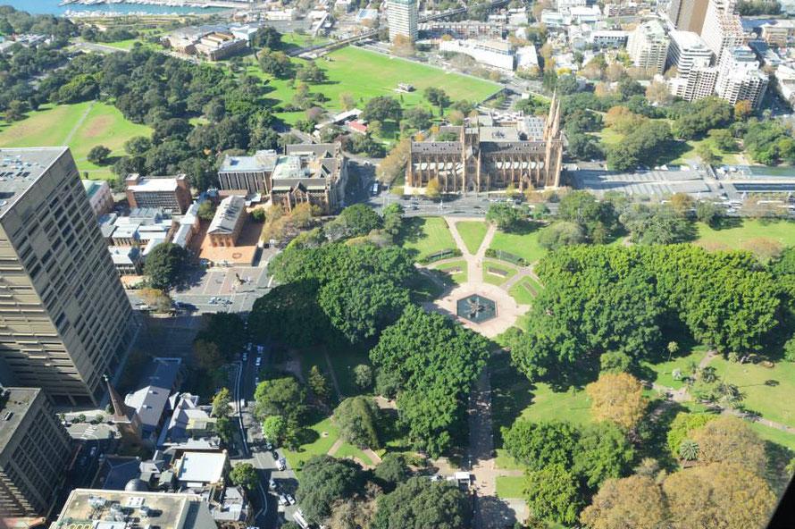 Hyde Park (Ort meiner ersten Schritte in Sydney)