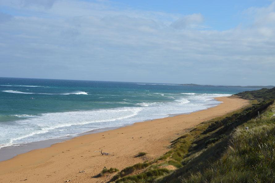 Die Atemberaubende Küste vom Aussichtspunkt aus - auf der linken Seite seht ihr einen Wal.
