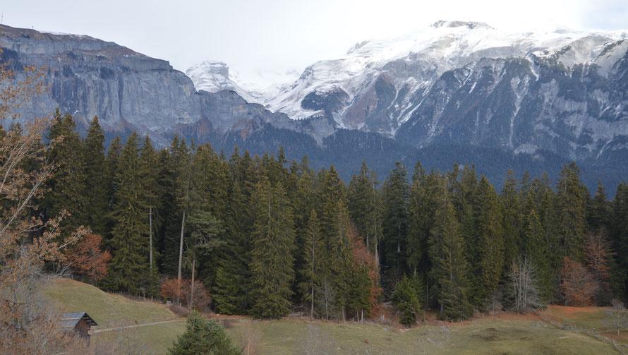 Die Landschaft ist herrlich - hier unten ist der Schnee lediglich auf den Wegen noch liegengeblieben.