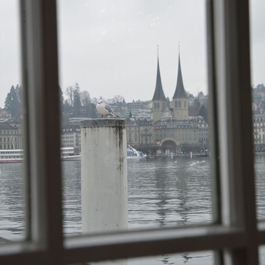 Meine Aussicht beim Kaffeetrinken und Bericht schreiben - Seebistro Luzern