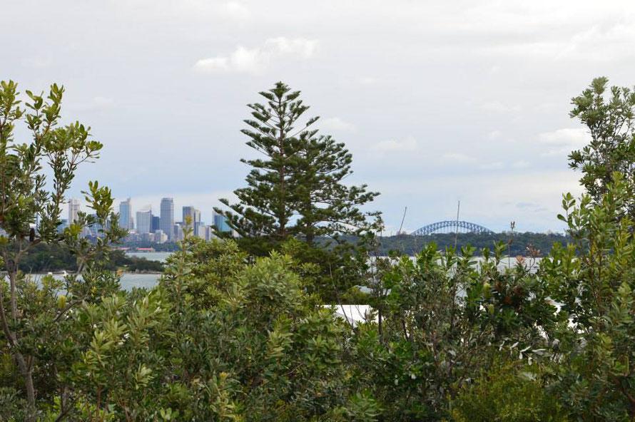 Aussicht auf Sydney von Watson Bay aus
