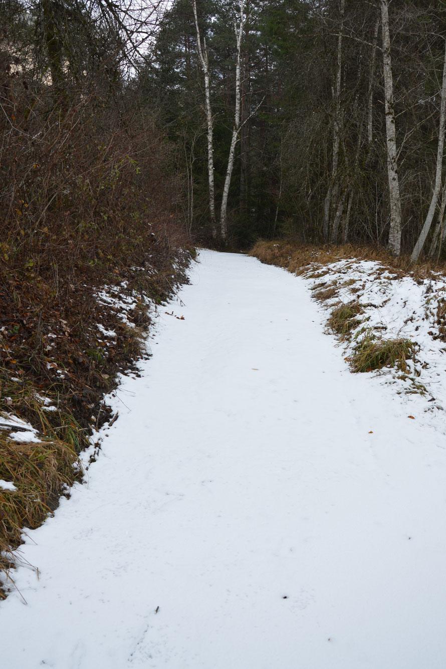 Auf diesem Weg war heute definitiv noch niemand unterwegs.